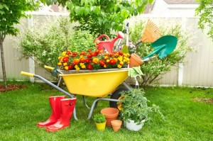 Great gifts for gardening